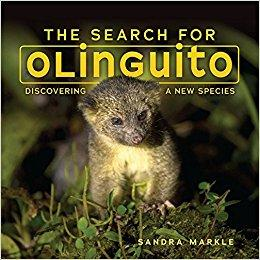 Cover image for The search for Olinguito