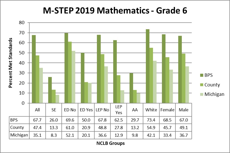 M-STEP 2019 Mathematics - Grade 6