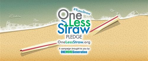 one less straw pledge